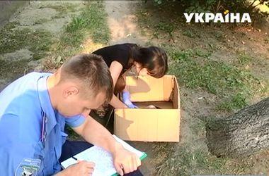 В Ивано-Франковске женщина выбросила младенца в подвал