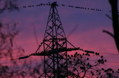 Стала известна цена украинского электричества для Польши