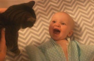 Невероятное знакомство: младенец пришел в восторг от домашнего кота (видео)