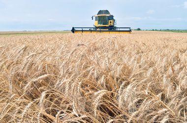 Аграриям в Украине могут ограничить расчеты наличкой
