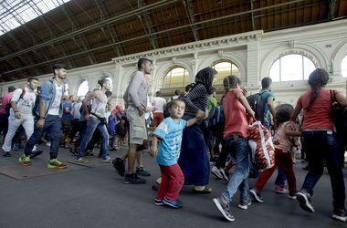 """""""Бавария"""" организует футбольный лагерь для беженцев и пожертвует 1 млн евро"""