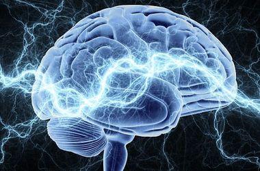 Ученые рассказали, что подрывает память человека