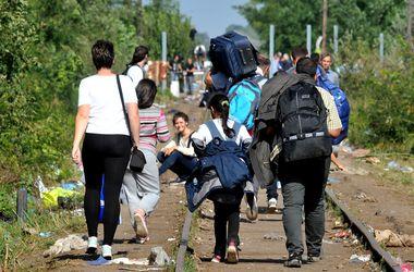 Спастись от беженцев: Венгрия перекрыла границу с Сербией