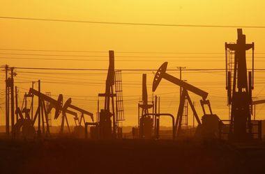 Цены на нефть могут взлететь выше $50 - эксперт