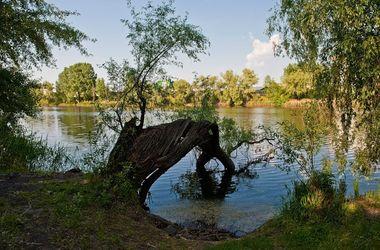 На киевском озере расчистят канализационный коллектор