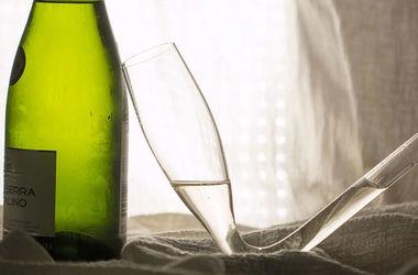 Изобретен самый быстрый способ напиться шампанским