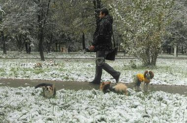 Москвичей нещадно засыпает снегом