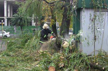 """На Буковине стихия разбрасывала деревья и """"отключила"""" каналы"""