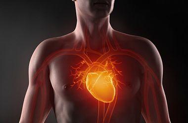 Медики назвали основные причины болезней сердца