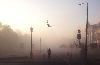 в тумане скачать торрент - фото 7