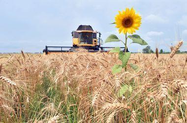 Сельхозпродукцию из блокадного Крыма везут в Индию, Пакистан и Бангладеш
