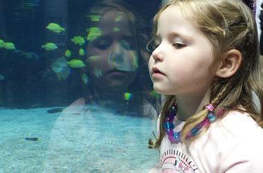 Уроки для особенных детей: как устроить ребенка-аутиста в школу