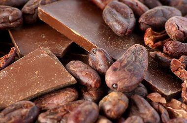 Украина катастрофически теряет экспорт шоколада