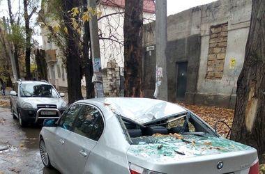 В Крыму дерево раздавило иномарку