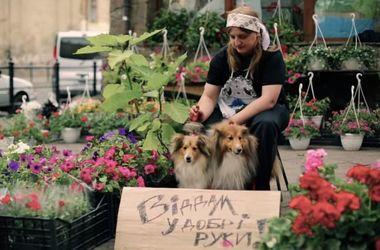 Во Львове сняли трогательный социальный ролик о бездомных животных