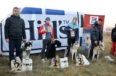 Гонки с собаками: одессит первым прибежал к финишу с пристегнутым к нему ризеншнауцером