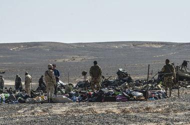 Египетские власти усомнились в версии теракта на борту российского А321