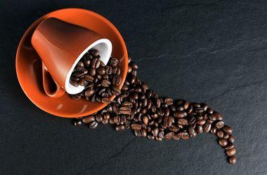 Как выбрать качественный и вкусный кофе