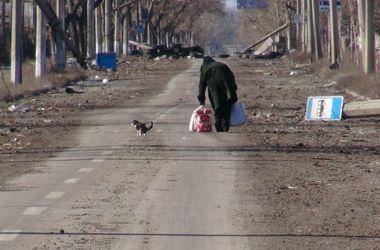 Руины, запустение и несчастные животные: в сети появились тяжелые кадры Донецка
