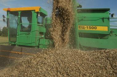Россия отказывается от контрактов на поставки зерна в Турцию