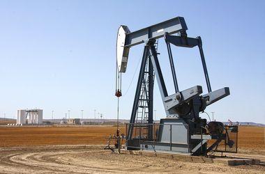 Цены на нефть растут после рекордного обвала