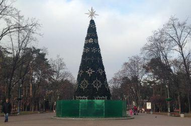 В Киеве становится все больше новогодних елок