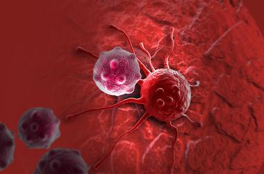 Ученые назвали главную причину возникновения рака