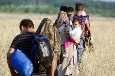 В Германии исчезли 250 тысяч беженцев
