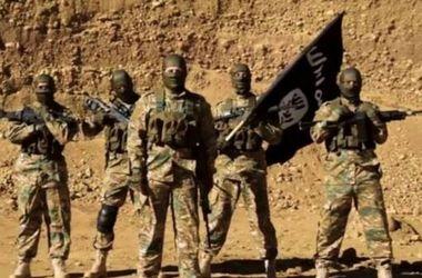 Войска Ирака вытесняют террористов ИГИЛ из центра Рамади