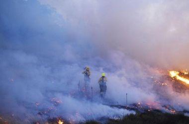 В Северной Испании бушуют лесные пожары