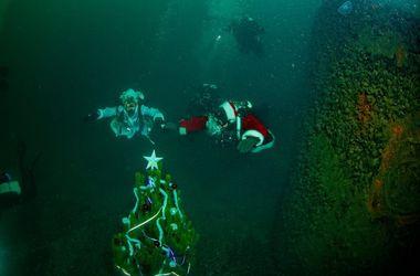 Одесские дайверы установили на дне моря новогоднюю елку