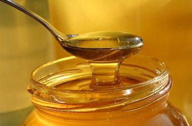 Украина теряет экспорт меда