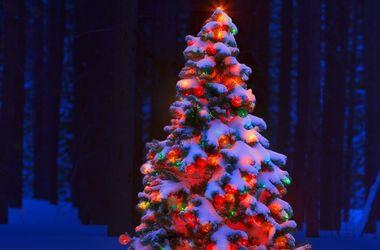 В Казахстане сгорела главная новогодняя елка