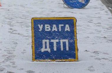Водитель маршрутки устроил смертельное ДТП в Запорожской области
