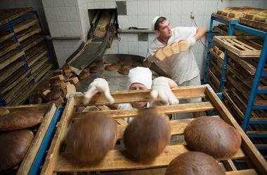 Опасная работа: работник хлебозавода в Житомирской области упал в чашу для теста