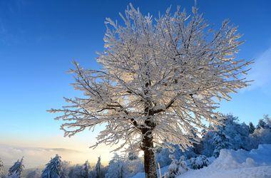 Завтра ночью в Украине ожидается 20-градусный мороз