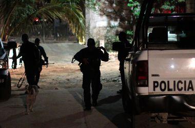 Петушиные бои в Мексике завершились перестрелкой