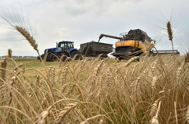 Спецрежим НДС для аграриев могут изменить - Яресько