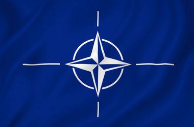 В феврале НАТО начнет переговоры с Черногорией о ее вступлении в альянс