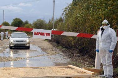 В Крыму из-за чумы устанавливают блокпосты