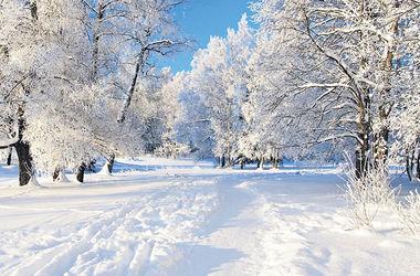 Зимняя сказка в парках Киева: присылайте фотографии на конкурс