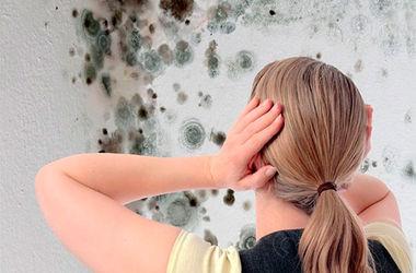 Как избавиться от сырости и плесени в ванной