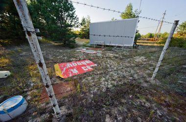 Чума в Крыму: полуостров превратился в одну зону карантина