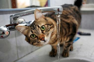 Херсон отказался от хлорирования питьевой воды