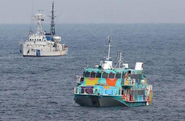 У берегов Японии паром налетел на кита