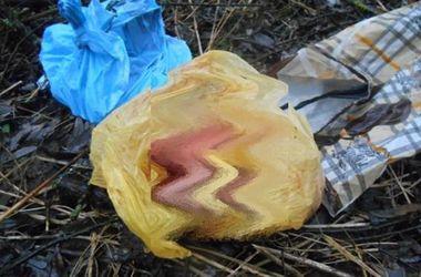 На Закарпатье в канаве нашли мертвого младенца