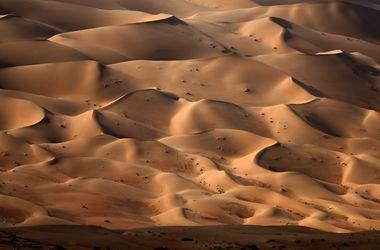 Долина Смерти зацвела