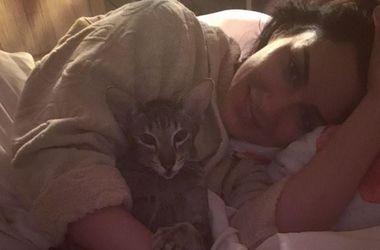 Тина Канделаки похвасталась своей породистой кошкой