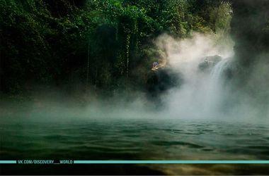 В джунглях Амазонки обнаружили кипящую реку