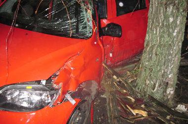 Смертельное ДТП в Ровенской области: влюбленная пара на иномарке влетела в дерево